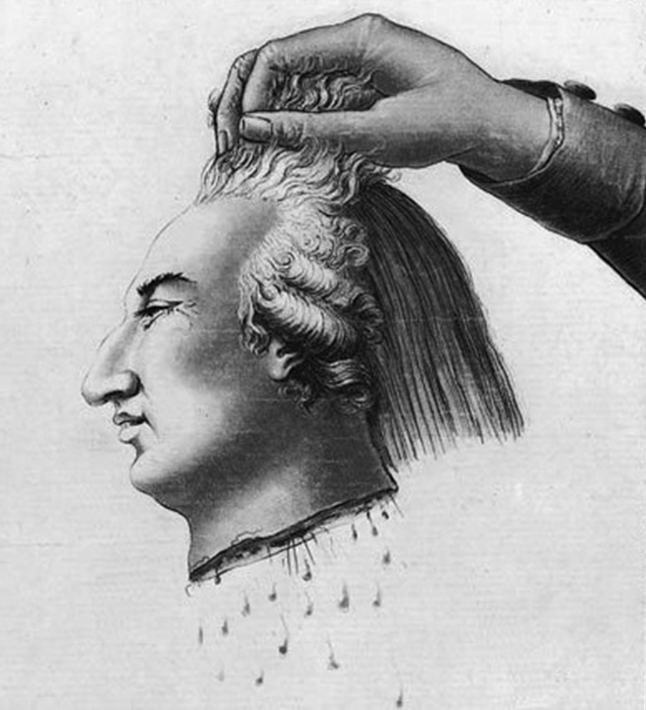 A brief overview of the execution of Louis XVI | | History ...